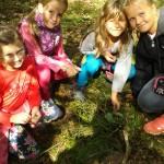 Podzimní aktivity v přírodě